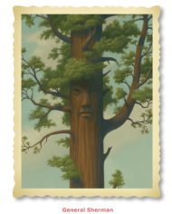 tree show postcards-12